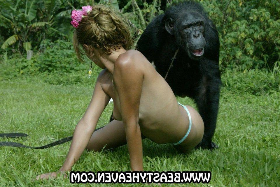 clips chimpanzee cumshot
