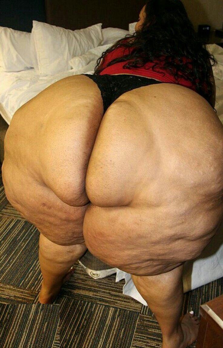 sexy fat ass bbw