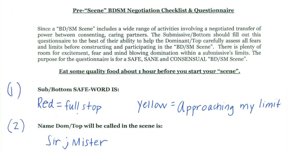 slave checklist bdsm